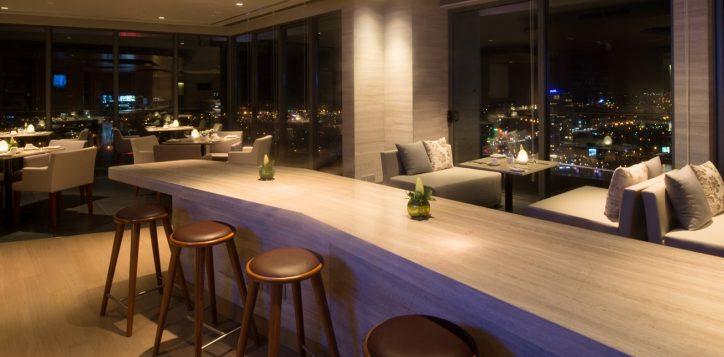 premier-executive-lounge2-2